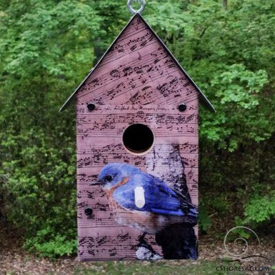 Bach, Beethoven, Bluebird